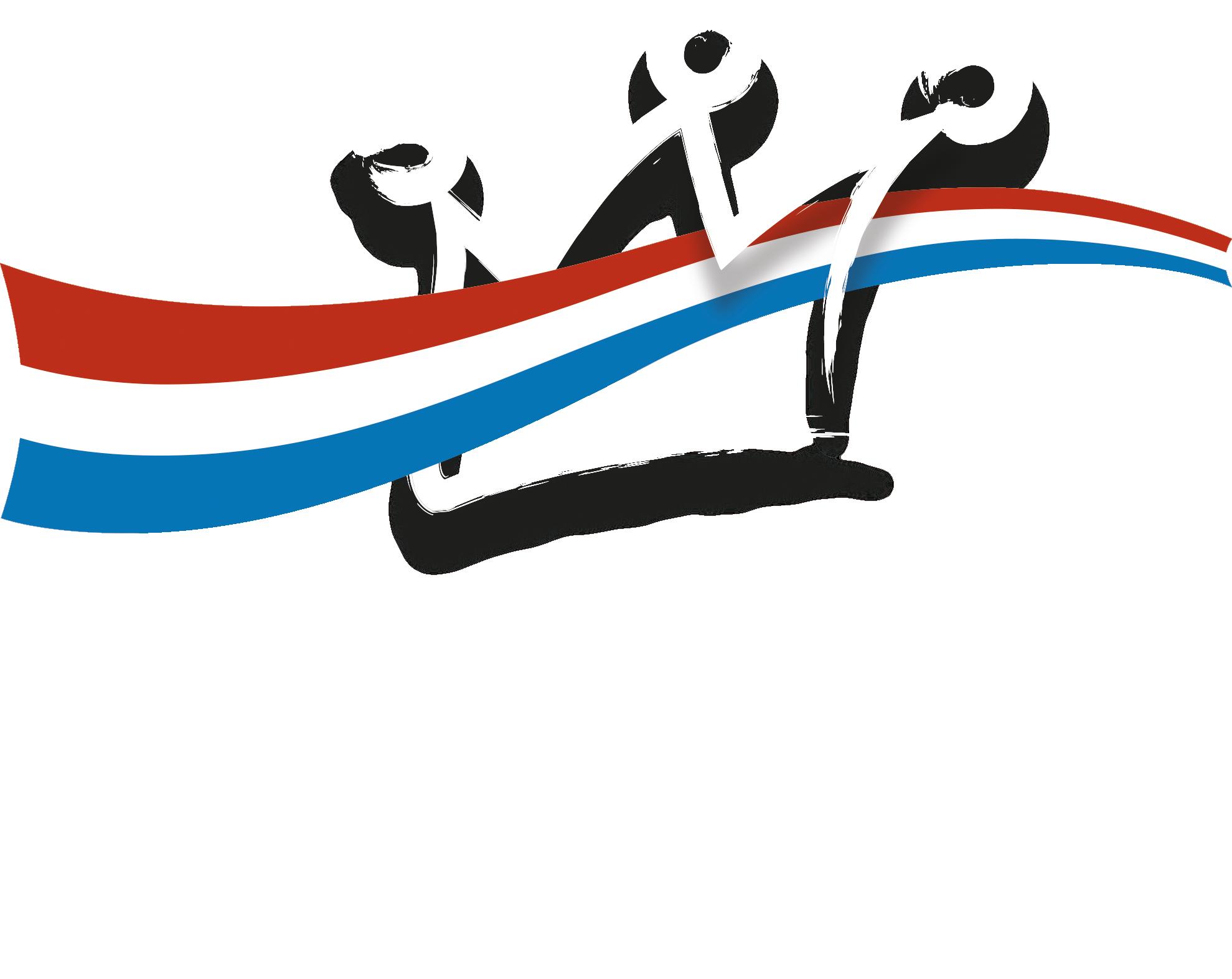Koningsdag Zaltbommel